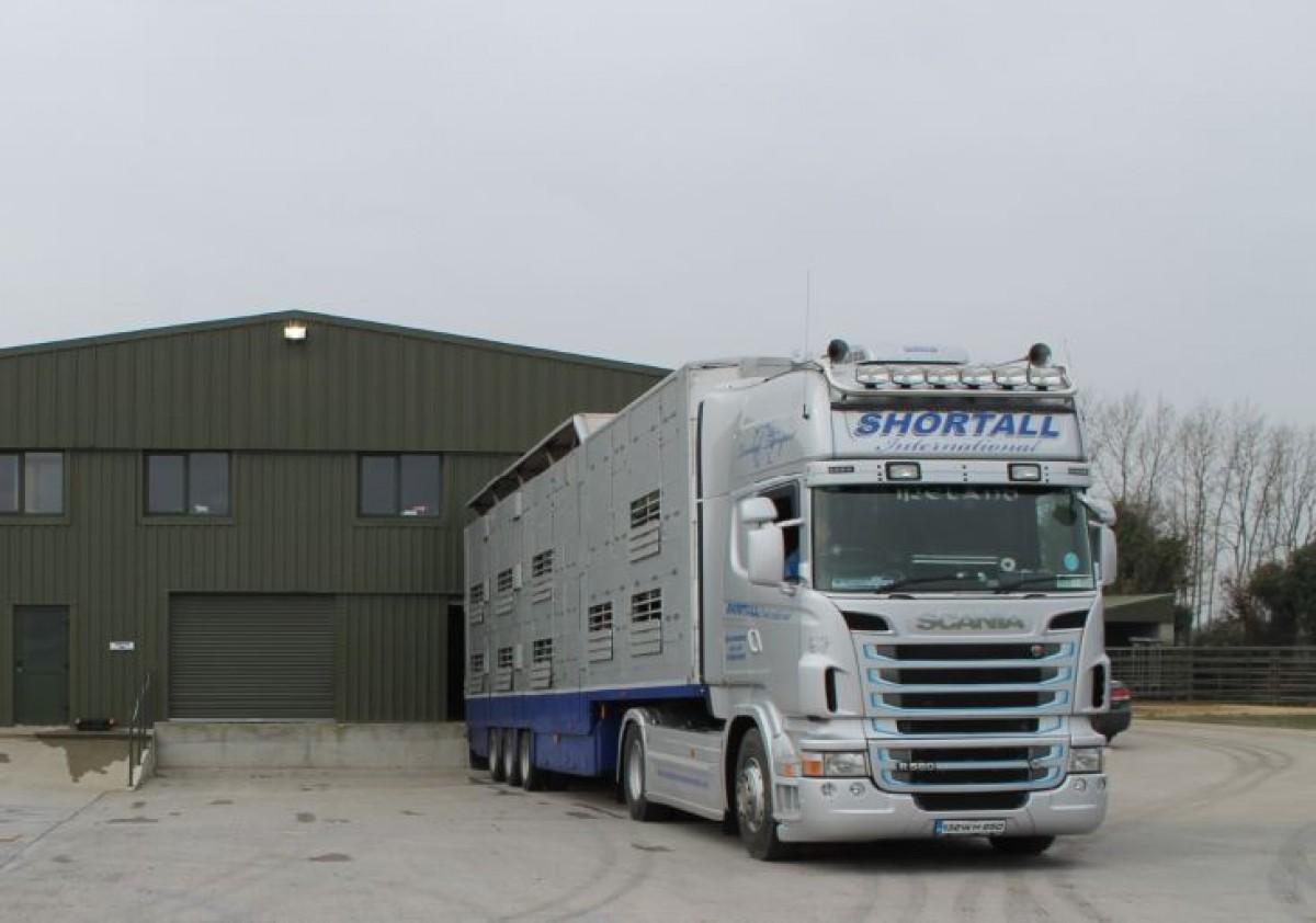 Blauwtong: geen veetransporten vanuit Frankrijk naar Nederland