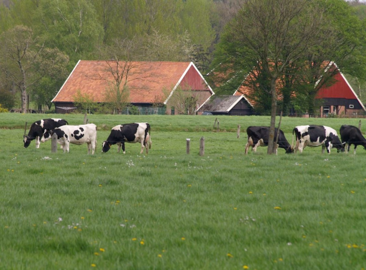 Na Caring Vets ook Caring Farmers