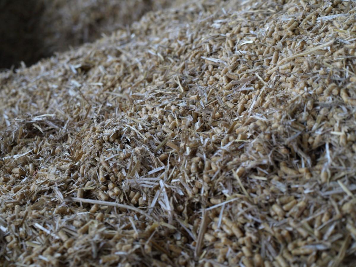 Veehouders verplicht tot zelfcontrole kritische stoffen