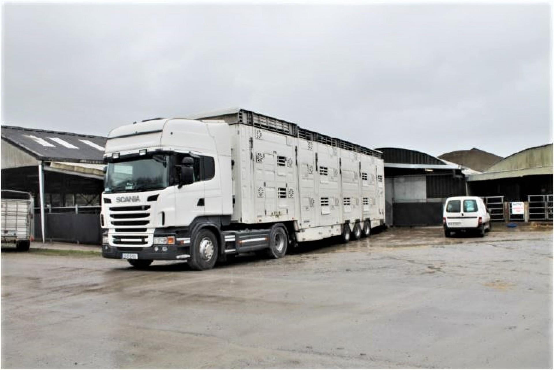 Dierenbeschermers volgen Ierse kalvertransporten