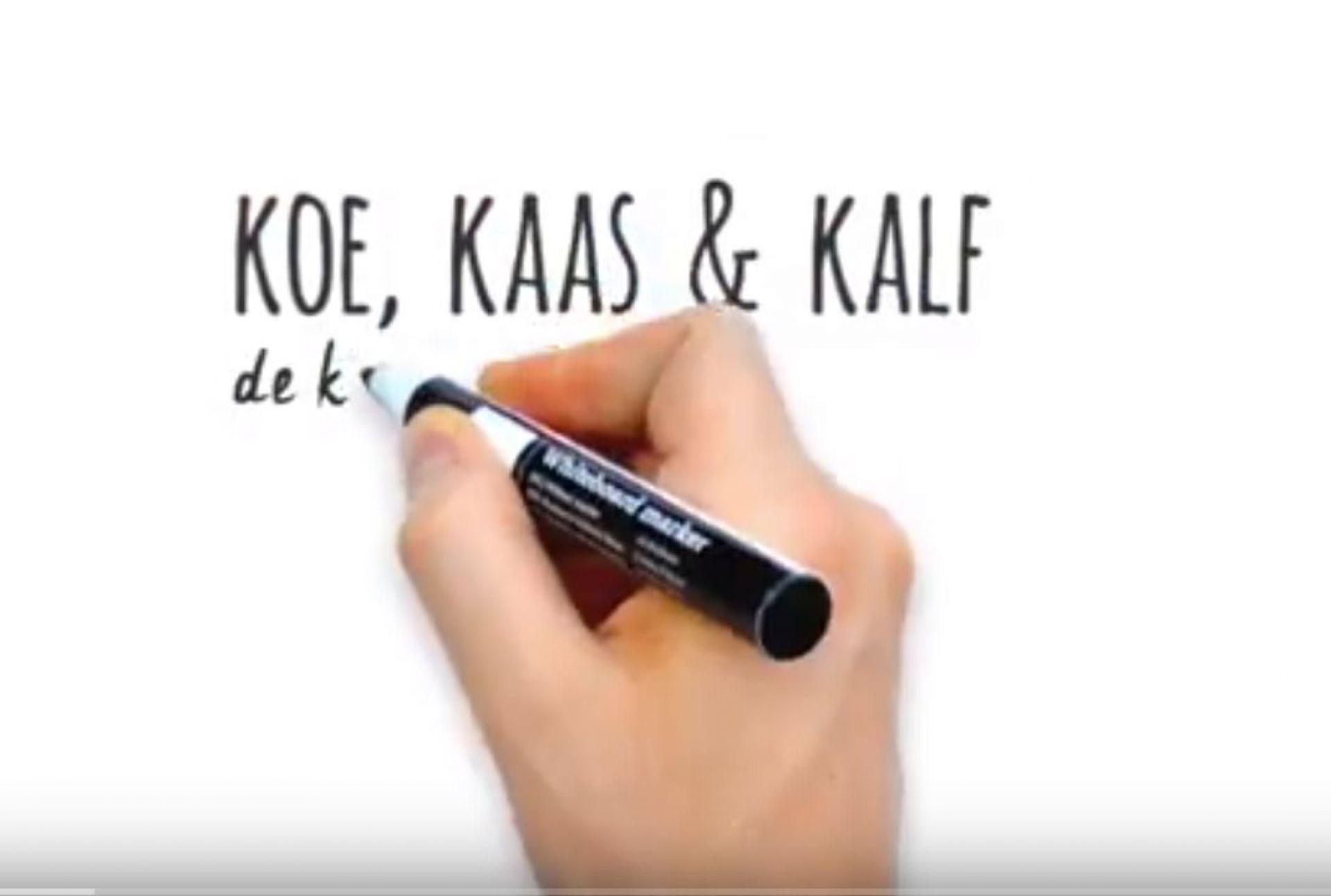 [video] Koe Kaas & Kalf - de kalverhouderij uitgelegd